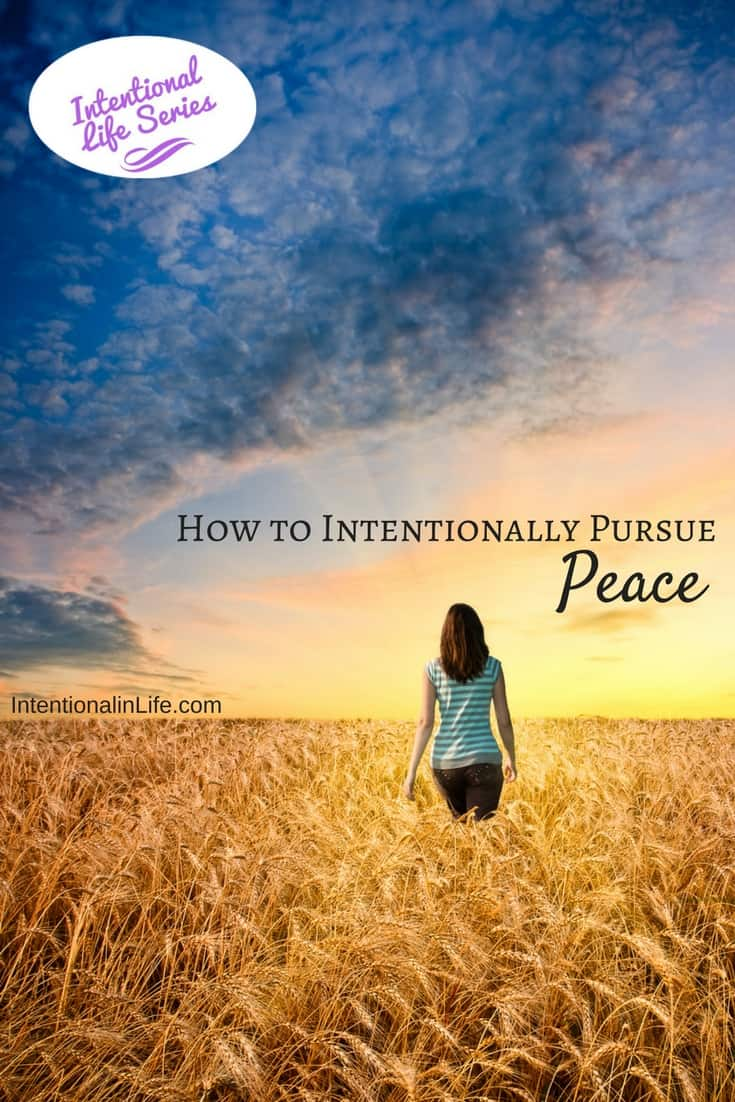 Would you like to know how to intentionally pursue peace? Come on over and read what Melanie had to say about intentionally pursuing peace in your life.