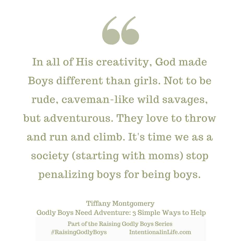 Our All-Knowing God created boys and girls with so many differences we can't number them. He had a plan and a design. It is critical that we raise them up to be who He created them to Be. Godly Boys were created with a wild nature and long for adventure - just like God. How can we nurture them to raise godly men?